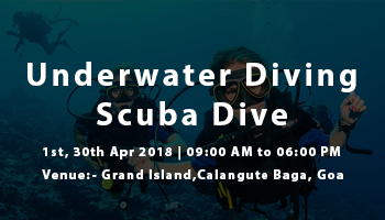 Underwater Diving Scuba Dive in Goa