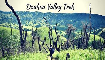 Dzukou Valley Trek In Nagaland