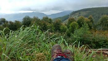 Meesapulimala Trek and Forest Camping (14-16th Sep)