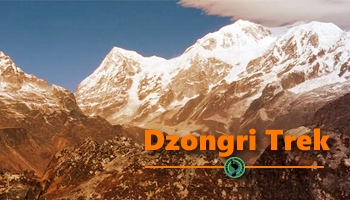 Dzongri Trek : Gate way to Kanchenjunga Mountains (13th-19th Oct)