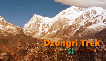 Dzongri Trek : Gate way to Kanchenjunga Mountains (2nd-8th Mar)