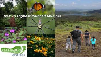 Trek to Highest point of mumbai
