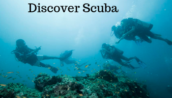 Scuba Diving in Kaup Udupi