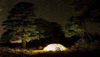 Night Camping in Hyderabad  Anantagiri Hills Forest