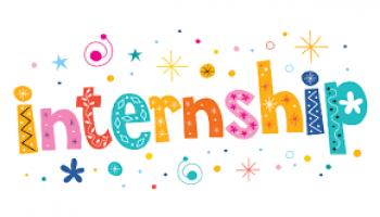 Summer Internship in WAPT
