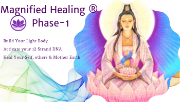 Magnified Healing Phase-1 Workshop 26-28 July 2019