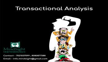 mindsight transactional analysis workshop