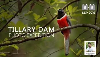 TIllari Dam Bio Region Photo Expedition