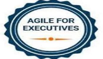 Agile For Executives Training in Bangalore on 13th Nov, 2019
