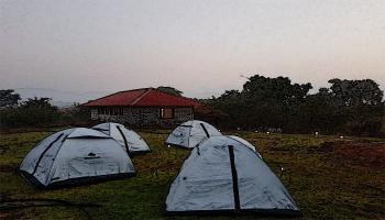 Night Camping close to Durshet Forest - Forganic Farm