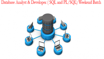 Live Weekend Training : SQL and PL/SQL