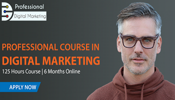 Professional Course in Digital Marketing - 6 Months Online Program with Live Sessions - Jul 2020
