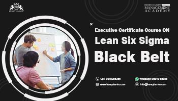 Lean Six Sigma Black Belt Course Online