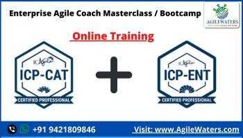 Enterprise Agile Coach Masterclass / Bootcamp