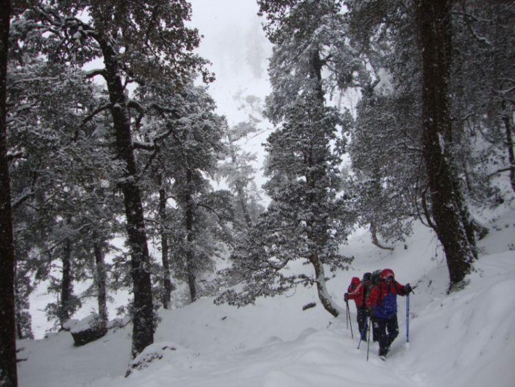 Winter Trekking Expedition to Kuari Pass, Uttarakhand